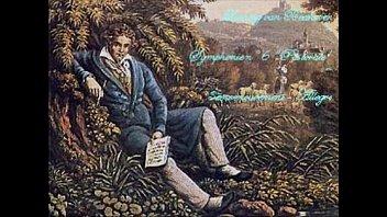 L. van Beethoven - Symphonie N&deg_6 - 3&egrave_me mouvement : Allegro