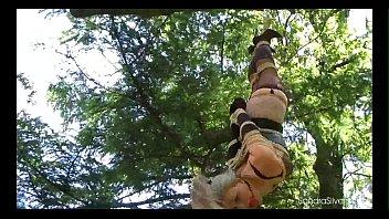 sandra nature suspension